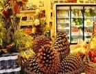果维多零食超市 果维多零食超市诚邀加盟