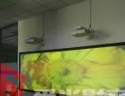 投影机音响 销售 提供上门安装服务