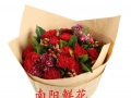 母亲节520南阳鲜花速递内乡邓县唐河方城镇平桐柏