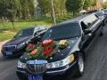 垫江县汽车租赁,各种中高低端轿车,商务用车