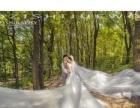成都市新都墨子视觉婚纱摄影工作室 植物园 马场 科马小镇
