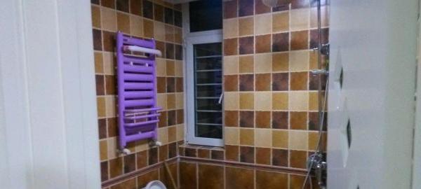 3室2厅 150平米 精装修 年付可议
