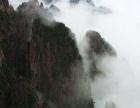 避暑出游计划|武汉到黄山3日跟团游费用