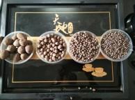广州陶粒厂家,广州陶粒厂,广州陶粒,,番禺陶粒厂,南沙陶粒厂