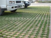 植草砖一般价格-广西井字植草砖厂家