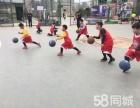 未来体育 周六周日免费体育课火热招生中