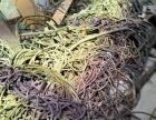 岚山电缆头回收今日废电线回收价格