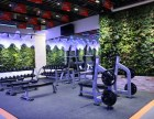 确菲森林健身商业中心店推出热恋卡全城热练