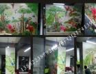 壁画 墙绘 3D立体画 文化墙 美院团队底价接单
