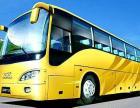 乐清到滨州的旅游汽车大巴15825669926