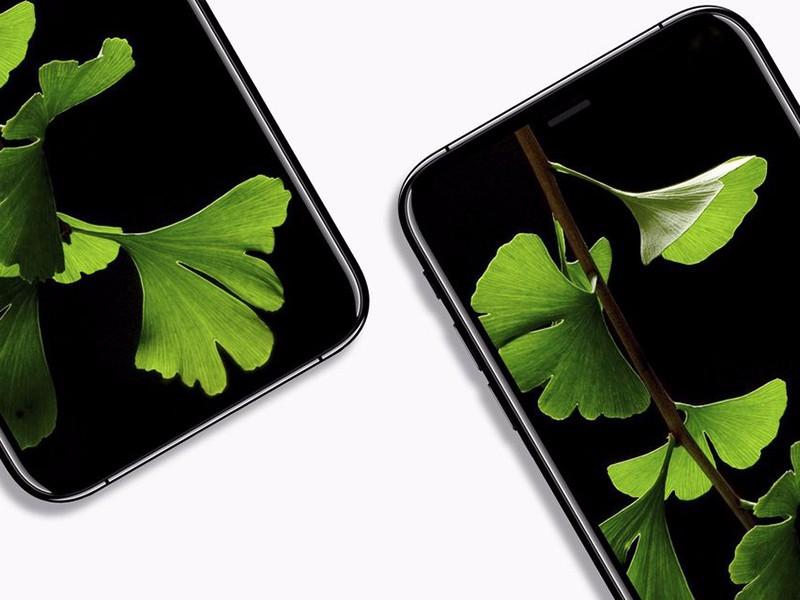 福州买苹果手机分期,哪里有iPhone X现货