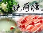晓荷塘火锅加盟热线电话
