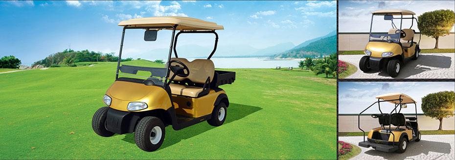 绿捷特2座高尔夫球车会所车两座电瓶游览车观光车
