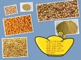 湖北旺川现金求购玉米 大豆 高粮 棉粕