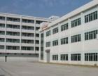 靓博罗花园式厂房1至2楼5200平米