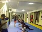 武术 散打 搏击 综合格斗 女子防身 以色列完美反击 短棍