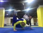 上海武术段位考试泰拳摔跤培训