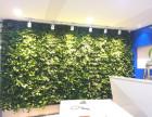 西安植物墙 绿植墙 鲜花盆景与室内装饰