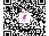 广州飞扬舞蹈,专业舞蹈 瑜伽培训