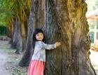 绿语森林幼儿园,带孩子寻找【我的树】