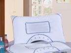 夜雅U型透气磁疗枕头保健枕芯 决明子枕头