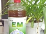供应神众种植em原液-西瓜专用em益生菌