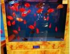 观赏鱼缸风水水族鱼缸高档公司风水鱼缸会所观赏缸
