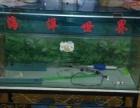 玻璃大型鱼缸