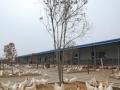 天然氧吧林场木材小区养殖种植好厂房 加油站首选