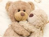 供应新款毛绒玩具定做 价格低服务好的订制毛绒玩具批发