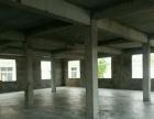 金明区 花生庄 厂房 500平米