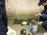 青羊區滅鼠公司 青羊區除甲醛公司 青羊區油煙機清洗公司