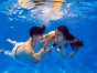 水下婚纱摄影 拍一套鱼美人婚纱水下摄影需要多少钱