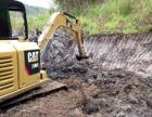 全新大,中,小挖掘机出租