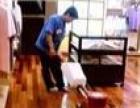 专业地毯清洗,地板打蜡