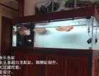 老族长系列高端鱼缸,强大的过滤能力,专业养鱼好装备