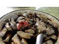 【旅游咨询服务】汕头南澳岛最好玩特色旅游之出海捕鱼