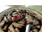 【旅游咨询服务】汕头南澳岛较好玩特色旅游之出海捕鱼