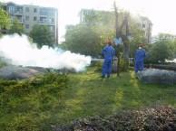 常平哪里有防治白蚁公司 土建 装修预防白蚁资质齐全