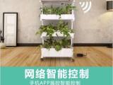 智能蔬菜种植机可移动式植物净化器无土栽培设备智能种植机