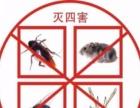 济南全年保障杀虫除蚁,灭鼠灭蟑螂 保洁 家电清洗等