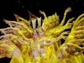 文化宫国标舞培训2017年暑假招生开始啦