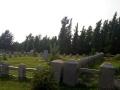 金龙山墓地 青山绿水,人间福地