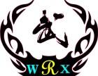 专业少儿武术 青少年散打 上班族搏击专业训练培训中心