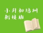 朝阳小学周末补课 小升初课内辅导 小学数学一对一