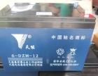 天能长寿王48V12AH 四只装电动车动力电池