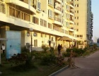 津淮街 刺桐公园旁淮云阁中装复式2房只租2300随时看房
