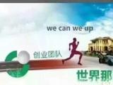 中国人寿招聘各种精英