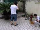 云南省专业消防管漏水检测 暗管漏水检测 自来水管道漏水检测