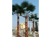 新品仿真棕榈树,哪里有卖|人造海枣树厂家